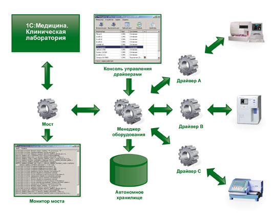 Clinic_lab_scheme_green.jpg